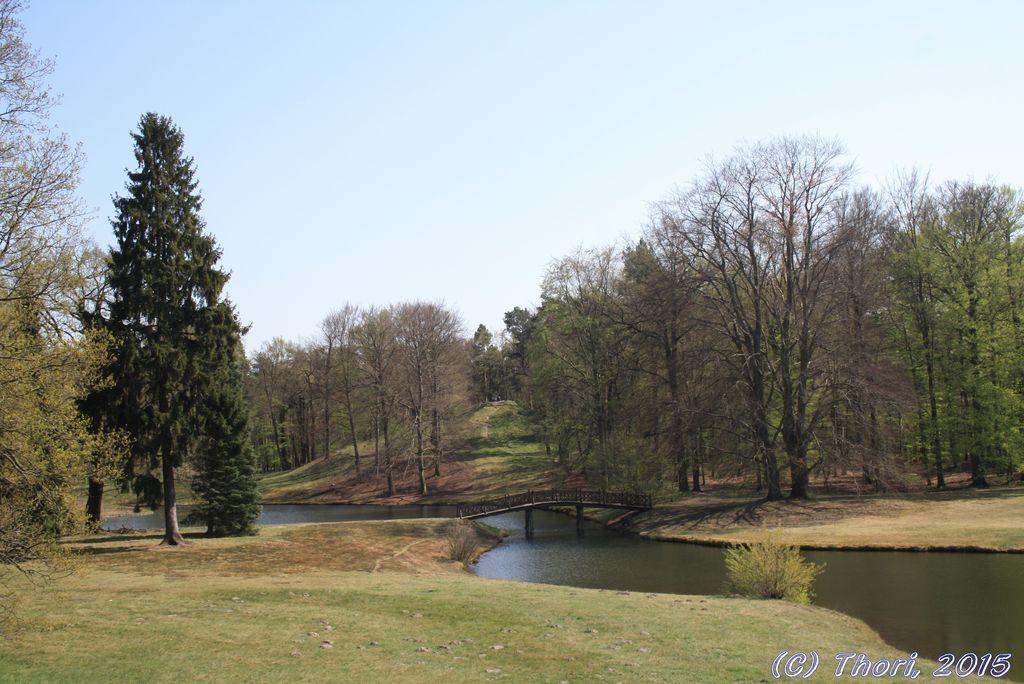 Frühlingserwachen im Branitzer Park, 23.04.2015